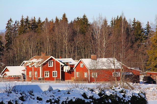 Mehrere rote Holzhäuser vor einem Wald